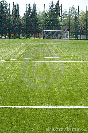 Grass field for soccer