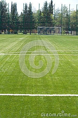 Grass field for soccer