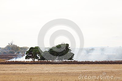 Grass Fire Royalty Free Stock Images - Image: 26123339