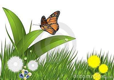Grass, flowers and butterfly, cdr vector