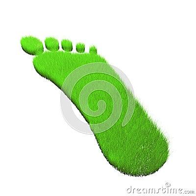 Grass footprint.