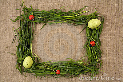 Grass frame with eggs and lady-bugs