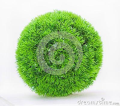 Grass green ball