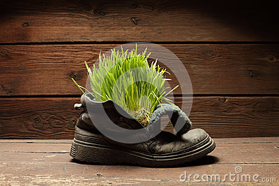 grass in grunge boot