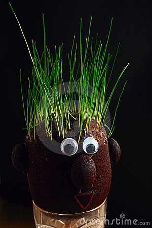 Grass on the head