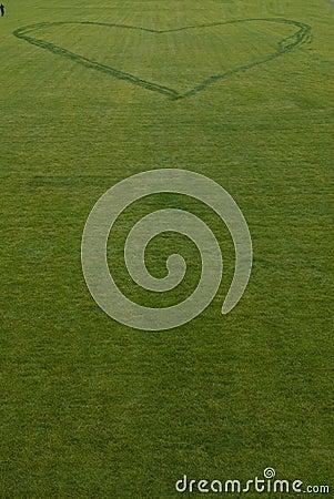 Grass heart