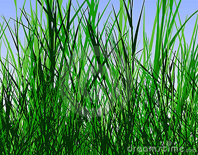 Cartoon Jungle Grass Grass jungle stock images