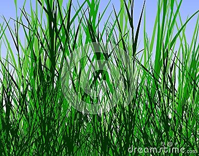 Cartoon Jungle Grass Grass-jungle-3763374.jpg