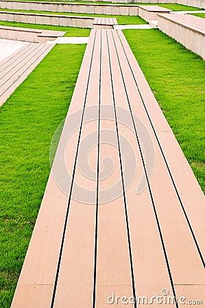 Grass and ladder