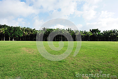 Grass land under sky