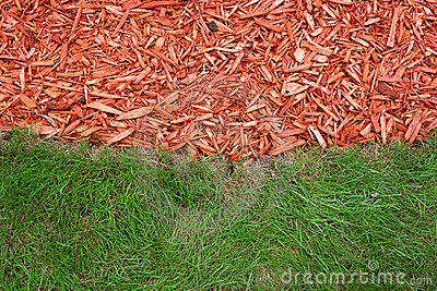 Grass and mulch