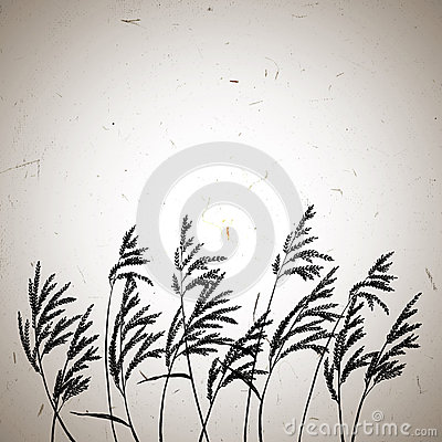 Free Grass Panicles Card Template. Royalty Free Stock Images - 67907699