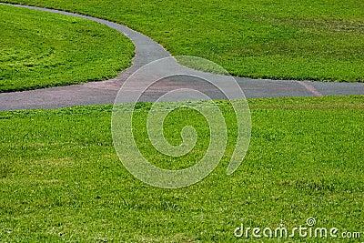 Grass Path #3