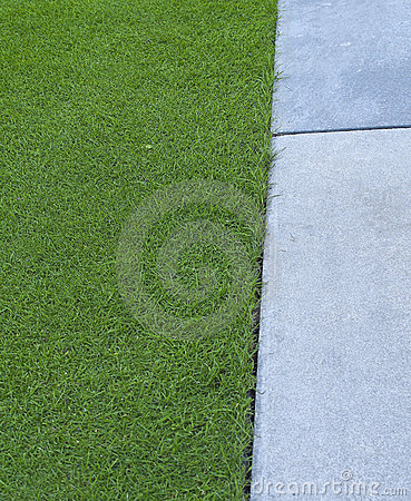Grass and paving