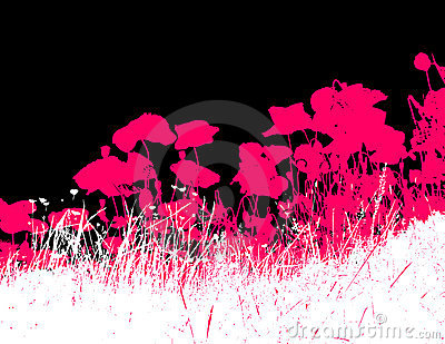 Grass with pink poppy flowers.Vector
