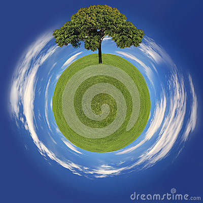Grass Planet and Tree Going Green Concept