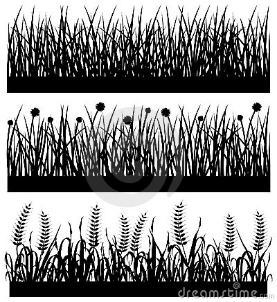 Grass Plant Flower Silhouette