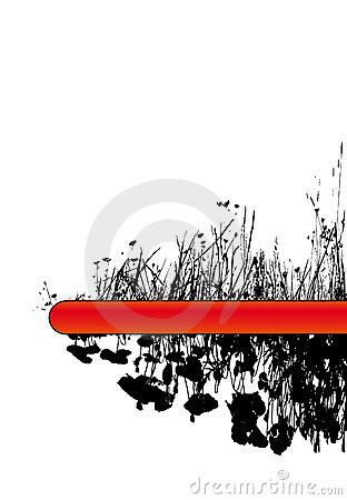 Grass and poppy flowers. Vector