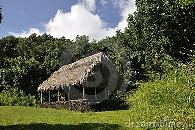 Grass roofed hut