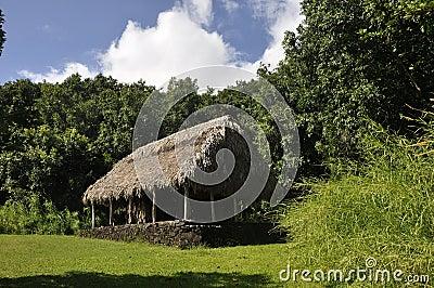 Grass roofed hut