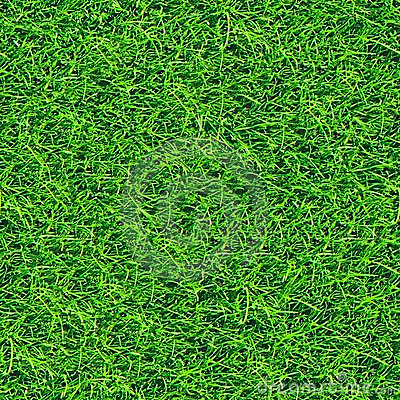 Grass seamless pattern (2 of 2).