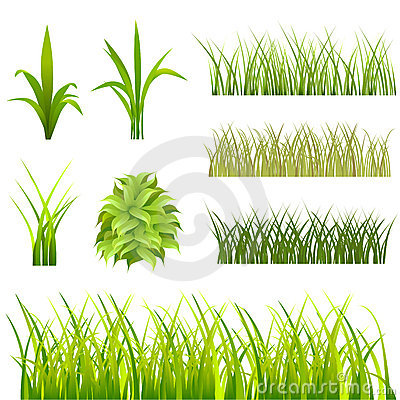 Free Grass Set Royalty Free Stock Images - 6690769