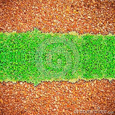 Grass on the sidewalk