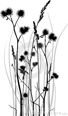 Free Grass Silhouette Stock Images - 9302904