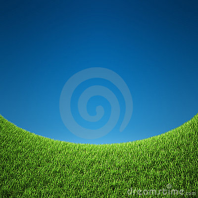 Grass with sky