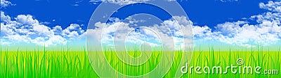 Grass and sky