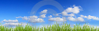 Grass and sky banner