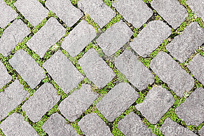 Grass Stone Floor texture pavement design Stock Photo
