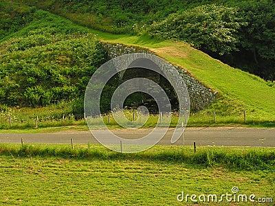 Grass Track Bridge.
