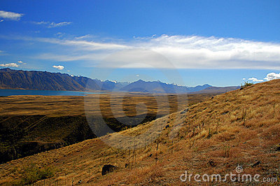 Grass and tussock hill at Lake Tekapo