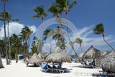 Grass umbrellas at tropical beach resort