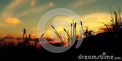Grass Undergrowth 3