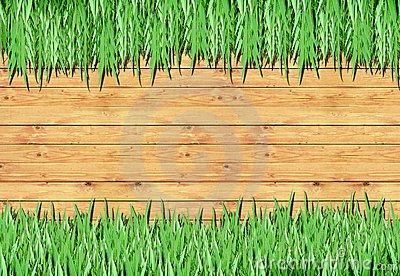 Grass, wood frame with the background