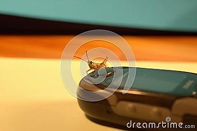 Grasshopper-2 móvil