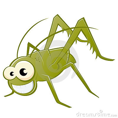 Free Grasshopper Illustration Royalty Free Stock Images - 20430659