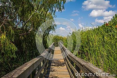 Grassland Boardwalk