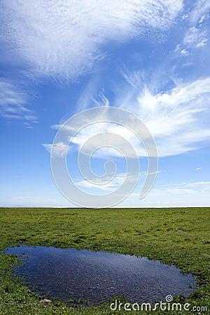Grasslands scenery