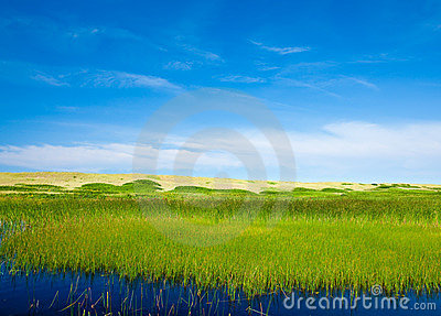 Grasslands and summer sky