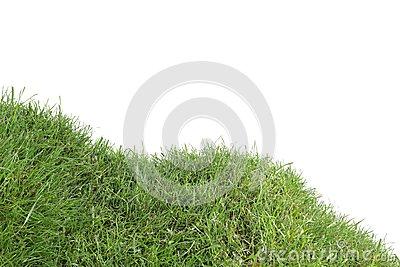 Grassy Down Hill Cutout