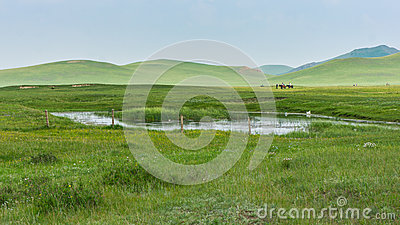 Grassy landscape and hills