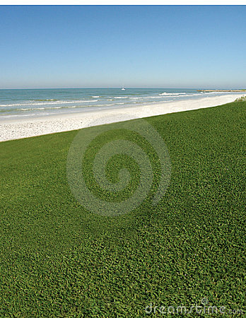 Free Grassy Ocean View Stock Photo - 777120
