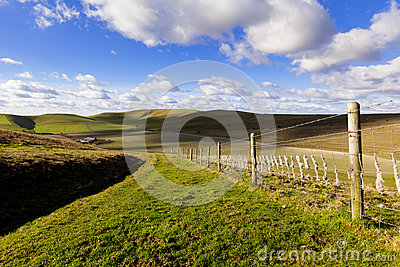 Grassy Path in Rolling British Countryside