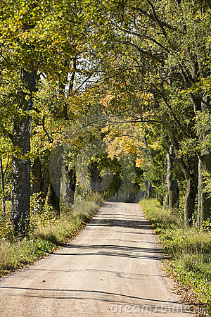 Gravel road alley