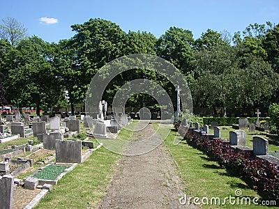 Graves 17