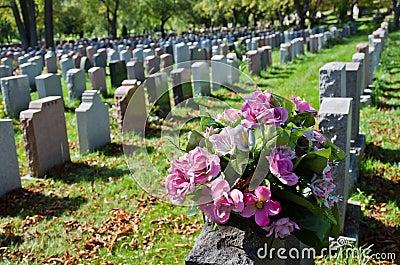 Gravestones in an american Cemetery