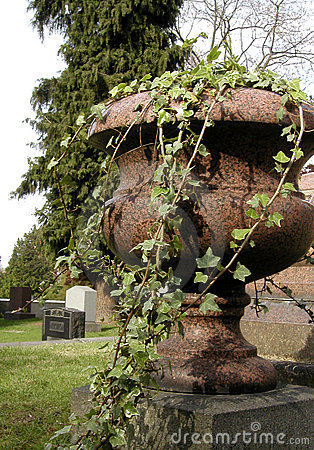 Graveyard Ivy